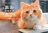 在搗蛋中陪你度過每一天:貓奴養成手冊