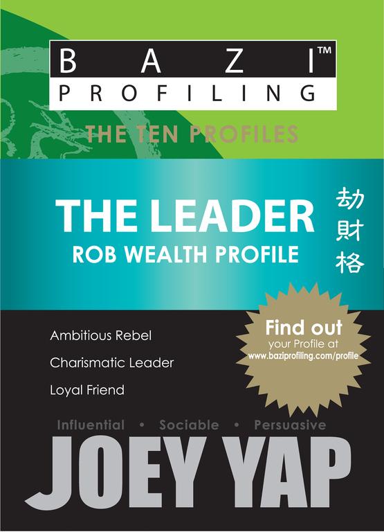 The Ten Profiles - The Leader (Rob Wealth Profile)