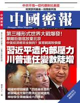《中國密報》第82期