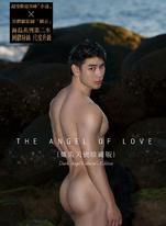 The angel of love【熾黑天使版】