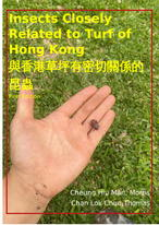 Insects Closely Related to Turf of Hong Kong